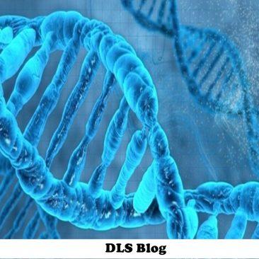 DLS Student Blog